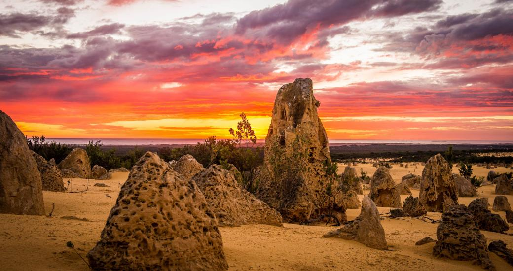 Pinnacles Desert Western Australia Sunset Nambung National Park