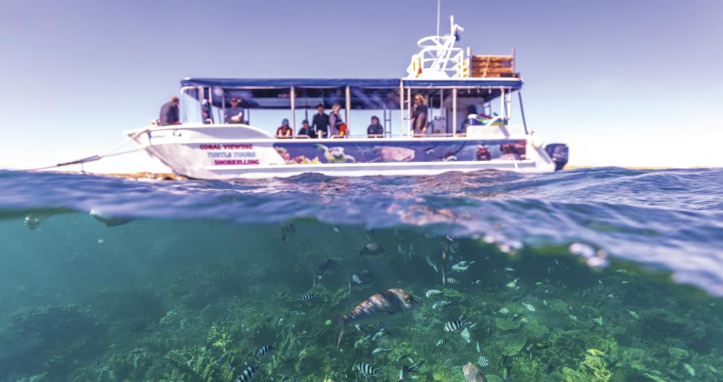 Ningaloo Reef Western Australia Glass Bottom boat