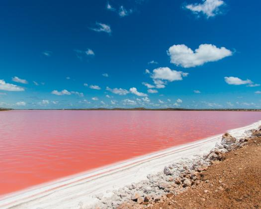 Pink Lake at Hutt Lagoon Port Gregory in Western Australia