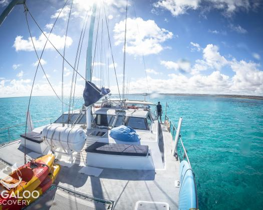 A photo of the deck on Windcheetah, Ningaloo Discovery's sailing catamaran, Western Australia