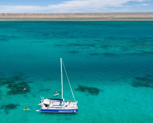 Guests on tour with Ningaloo Discovery snorkelling and kayaking on Ningaloo Reef's inner reef, Western Australia