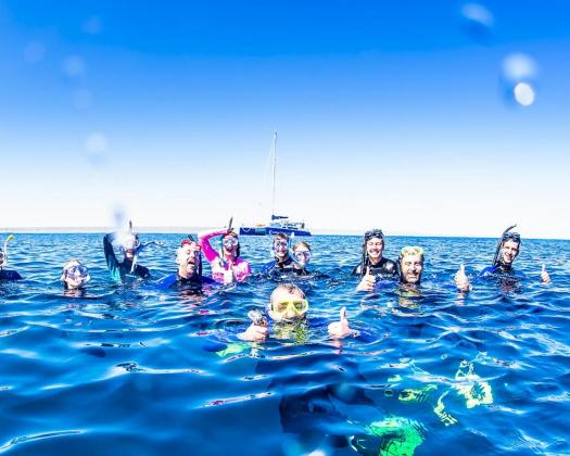 A group of swimmers on tour with Ningaloo Discovery, Western Australia