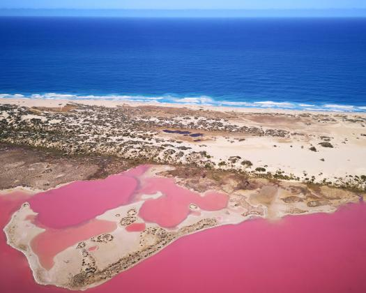 Flying over the Pink Lake