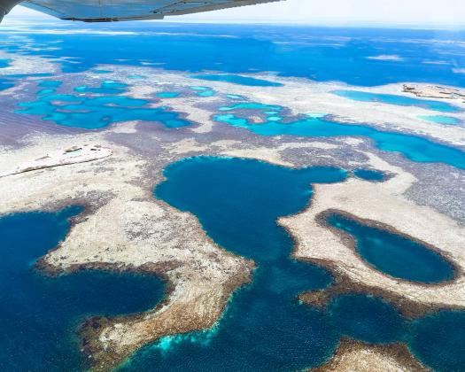 Coral reefs of Abrolhos islands