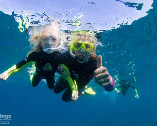 Snorkelling on tour with Kings Ningaloo Reef Tours, Western Australia