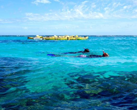 Kayak snorkel on the Ningaloo Reef, on tour with Exmouth Adventure Co, Western Australia
