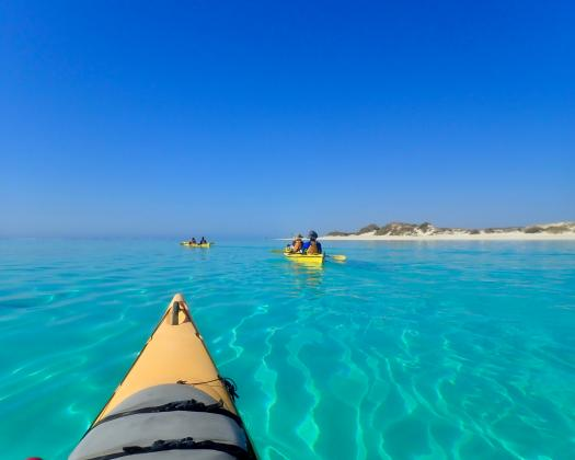 Paddling through turquoise Ningaloo waters with Exmouth Adventure Co, Western Australia