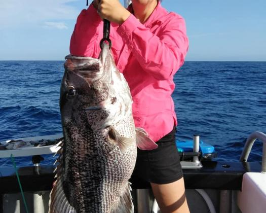 Dhufish, caught on tour with Offshore Charters WA, Western Australia