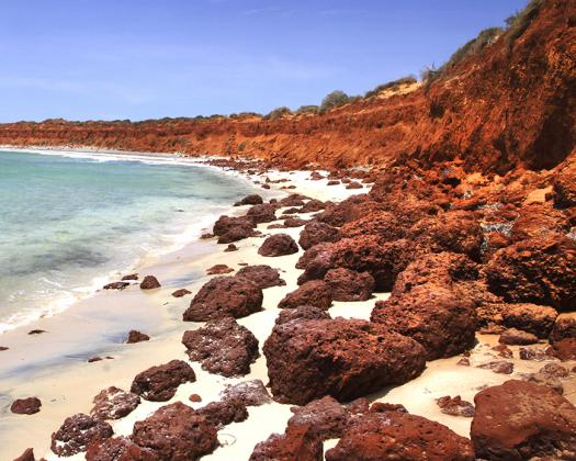 Red cliffs of Francois Peron National Park, Naturetime Tours, Western Australia