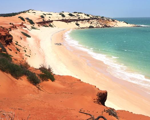 Get to know the secrets of Francois Peron National Park, Naturetime Tours, Western Australia
