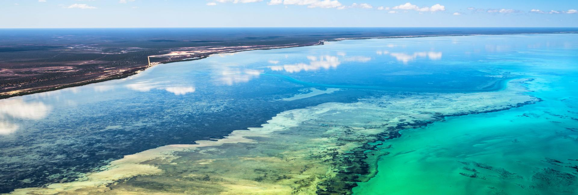 An aerial view over Shark Bay and seagrass from Coral Coast Helicopter Services, Western Australia