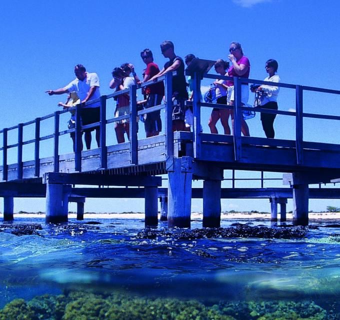 Viewing platform at Hamelin Pool Stromatolites, Shark Bay, Western Australia
