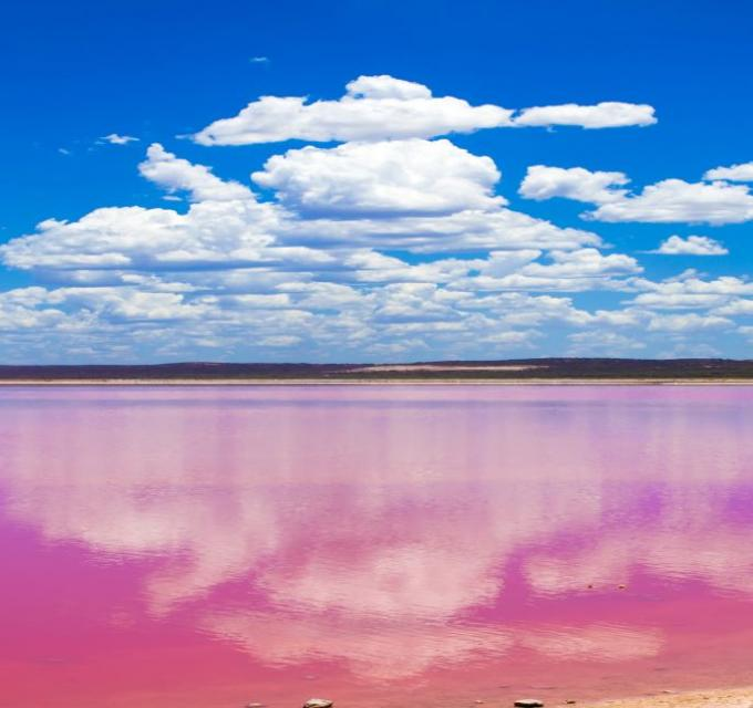 Pink Lake, Hutt Lagoon at Port Gregory, Western Australia